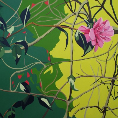 Winter - Pink camellia, twigs, leaves and sunshine p1