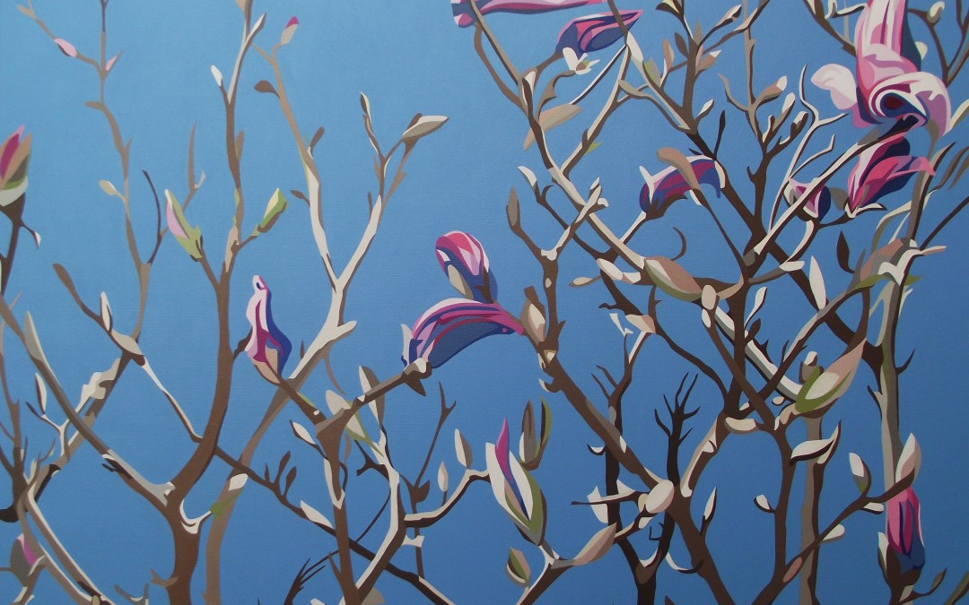 Spring - Purple Magnolia, bare branches and cold blue spring sky p8