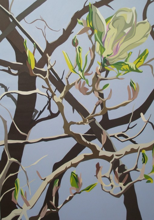 Spring – grey green Magnolia, first new leaves and bare branches