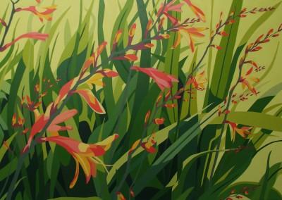 Summer - orange Crocosmia, dancing foliage and sunshine