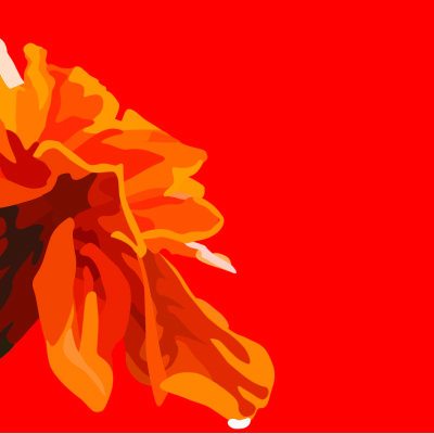 marigold red