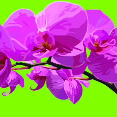 orchid green