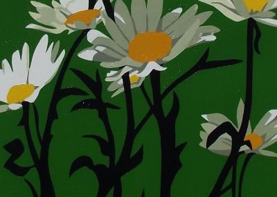 Daisy on green